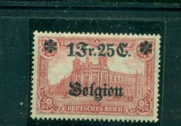 Deutsche Besatzung 1. WK,  Belgien Auf Darstellungen Des Kaiserreichs, Nr 8 Falz * - Deutschland