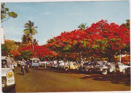 Nouvelle Calédonie,nouméa,archipel D'océanie,océan Pacifique,prés De L'australie,ROUTE,PARKING,MOTARD - New Caledonia