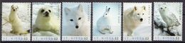 St Kitts MNH Arctic Animals Set And SS - Stamps