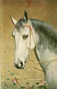 CHEVAUX - Pferde