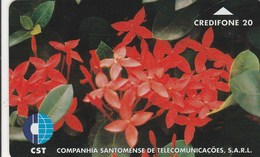 Sao Tome And Principe - Flower 2 - Sao Tome And Principe