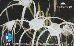 Sao Tome And Principe - Flower 3 - Sao Tome And Principe