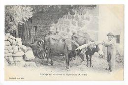 Attelage Au Environs Du Mont-Dore -   - L 1 - Auvergne Types D'Auvergne