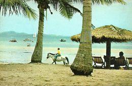 Thailandia (Thailand) Mid-Day, View Of The Phataya Sea-Beach - Tailandia