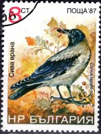 BULGARIA 1988 Birds - 8s - Carrion Crow FU - Bulgaria