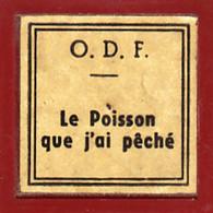 1 Film Fixe LE POISSON QUE J AI PECHE (ETAT TTB ) - Bobines De Films: 35mm - 16mm - 9,5+8+S8mm