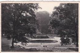 Brasschaat - Gemeentepark (zicht Van Uit 't Kasteel) - 1961 - Brasschaat
