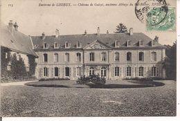 LISIEUX, CHATEAU DE GUIZOT,  B/N  VIAGGIATA - Lisieux