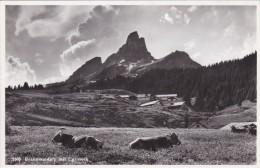 Braunwaldalp Mit Eggstock (1606) * 23. 8. 1940 - GL Glarus