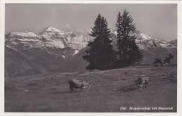 Braunwaldalp Mit Hausstock (7102) * 18. 7. 1932 - GL Glarus