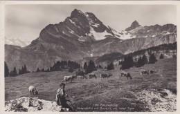 Braunwaldalp - Unterstaffel Mit Ortstock Und Hoher Turm (1188) * 27. 7. 1933 - GL Glarus