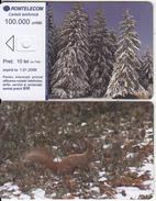 ROMANIA - Forest, Squirrel, Exp.date 01/01/09, Dummy Telecard(no Chip, No CN) - Romania