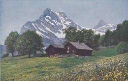 Die Schweiz - Sommertage In Braunwald - Ortstock (3632) - GL Glarus