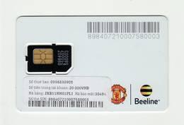 VIETNAM Beeline GSM SIM MINT - Viêt-Nam