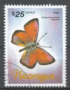 Nicaragua 1986. Scott #1572 (U) Palaeochrysoponus Hippothoe, Butterfly, Papillon - Nicaragua