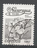 Nicaragua 1987. Scott #1592 (U) Bixa Orellana, Fleurs, Flowers - Nicaragua