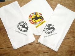 3 MOUCHOIRS  SOUVENIR DU  CHIO BAD AACHEN - Equitation