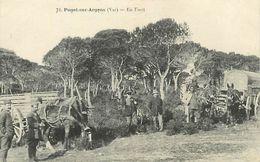 Réf : A-18 Pie Tre-1829 : PUGET-SUR-ARGENS. MILITAIRES EN FORET. ATTELAGES. - Autres Communes