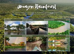 Guyana 2017 Amazon Rainforest - Geologia