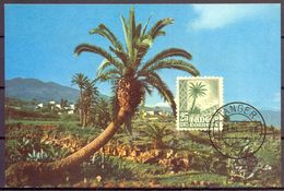 1958 , TÁNGER , PAISAJES , ED. 156 , MAT. DE TÁNGER , TARJETA POSTAL DE TENERIFE - Marruecos Español