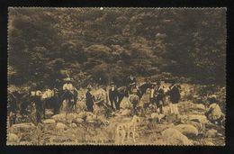 Argentina. Tucumán. *Quebrada De Lules* Ed. Prebish & Violetto Nº 216. Circulada Tucuman 1917. - Argentina