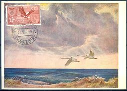 1958 , SAHARA ESPAÑOL , ED. 146 - AYUDA A VALENCIA , CIGÜEÑA , MAT. VILLA CISNEROS / COLONIA DE RIO DE ORO - Sahara Español