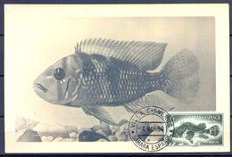 1958 , SAHARA ESPAÑOL , ED. 110 - DIA DEL SELLO , PECES , CABRACHO , MAT. VILLA CISNEROS / COLONIA DE RIO DE ORO - Sahara Español