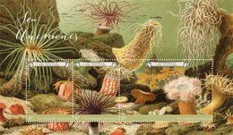 Saint Vincent & The Grenadines 2017 Animal Sea Anemones - Marine Life