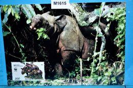 M1615 FDC WWF Java-Nashorn, Rhinoceros Sondaicus, Sunda Rhinoceros, Rhinoceros De Java, Rinoceronte, ID 1996 - Rhinozerosse
