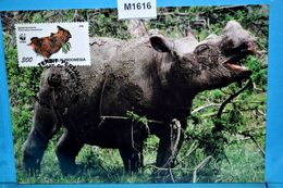 M1616 FDC WWF Sumatra-Nashorn, Dicerorhinus Sumatrensis, Hairy Rhinoceros, Rhinoceros, Rinoceronte, ID 1996 - Rhinozerosse