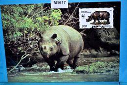 M1617 FDC WWF Java-Nashorn, Rhinoceros Sondaicus, Sunda Rhinoceros, Rhinoceros De Java, Rinoceronte, ID 1996 - Rhinozerosse
