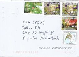 Madagascar 2011 Antananarivo Tree Flower Rhopalocarpus Physena Rice Cultivation Cover - Madagaskar (1960-...)