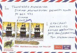 Ethiopia 2015 Jimma Lion Of Judah Addis City Monument Bushbuck Cover - Ethiopië