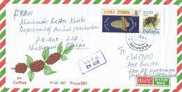 Ethiopia 2010 Shashemene Millennium Bushbuck Cover - Ethiopië