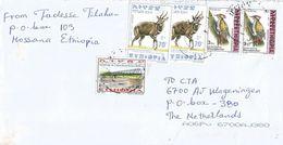 Ethiopia 2012 Hossana Bridge Bushbuck Woodpecker Cover - Ethiopië