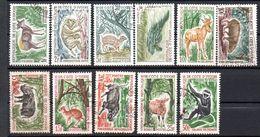 Lot De 11 Timbres Oblitérés    -sujets   Animaux   - Côte D'Ivoire - Costa D'Avorio (1960-...)