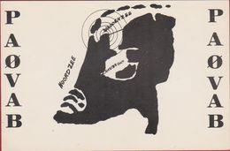 QSL Card Belgium Air Force Amateur Radio Station CB Holland PAOVAB 1976 Waddenzee - Radio Amatoriale