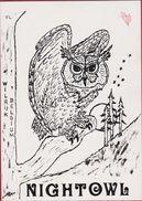 QSL Card Amateur Radio Station CB Belgium Wilrijk Nightowl Owl Uil Hibou Antwerpen 1980 J. Vertongen - Radio Amateur