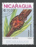 Nicaragua 1988. Scott #1729 (U) Gymnetosoma Stellata, Insect - Nicaragua