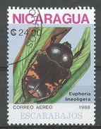 Nicaragua 1988. Scott #1730 (U) Euphoria Lineoligera, Insect - Nicaragua