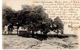 Guyane Cayenne Place Des Amandiers - Cayenne