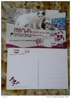 Carte Postale CHAT CHATON      Publicité WHISKAS - Chats
