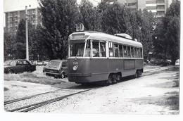 Tram 3142  Foto  TRAM 91  - TORINO 1976 - Tramways