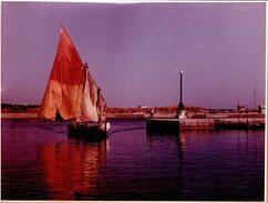 Grande Photo Couleur Originale - Arrivée D'un Bateau De Pêche Au Port Toutes Voiles Dehors Sur Papier Agfa 1950/60 - Bateaux