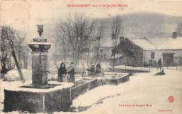 52 - HAUTE MARNE / 52694 - Beaucharmoy - Le Lavoir Et Le Petit Pont - Otros Municipios