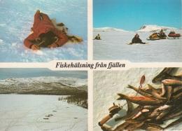 Svezia Pesca Attraverso Il Ghiaccio - Pesci E Crostacei