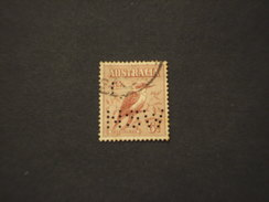N.S.W. - SERVIZIO - 1927 Uccello  6 P. (perfin  NSW) - TIMBRATO/USED - 1850-1906 New South Wales