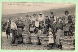 """VENDANGES EN CHAMPAGNE ,  Moët Et Chandon , """"A Votre Santé"""" , Photographe G.Franjou à Ay - Champagne-Ardenne"""