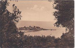 CPA N°185  Dept 85 ILE DE NOIRMOUTIER Bois De La Chaize Le Rocher Du Cob - Ile De Noirmoutier