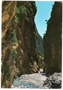 GRECIA/GREECE/GRECE - XENIA/CANEA/LA CANEE - THE RAVINE OF SAMARIA (PORTES) - Grecia